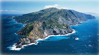Click to go to Catalina.com