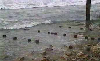 Remains of an old pier were uncovered!